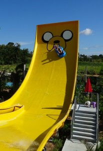 Jake The Dog Slide