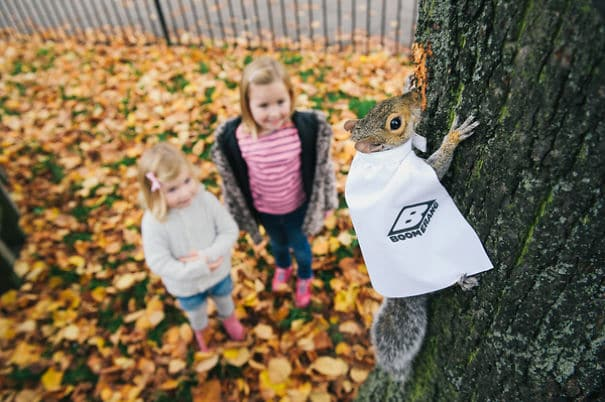Boomerang UK Wabbit Squirilla Marketing Campaign