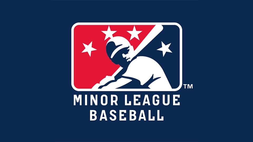 Minor League Baseball Partners With Cartoon Network USA's Best Summer Ever